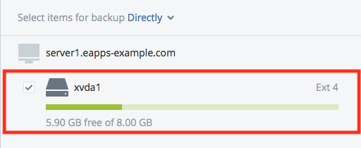 Acronis Disk Selection